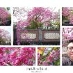 2017-03-03_222500